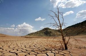 hay una probabilidad aproximada de 95% para que El Niño continúe durante el invierno del hemisferio Norte 2015-16.