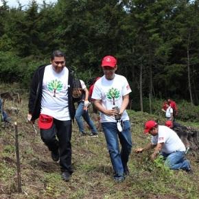 Jornada de reforestación enPatzicia