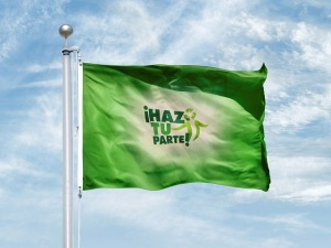 Bandera Verde, Comisión de Plásticos