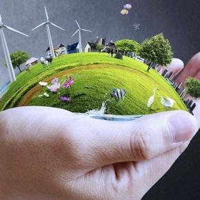 Transparencia y equilibrio ecológico, los retos en elMARN