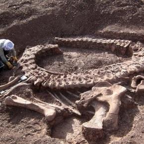 Científicos encuentran fósil de dinosaurio en laIndia