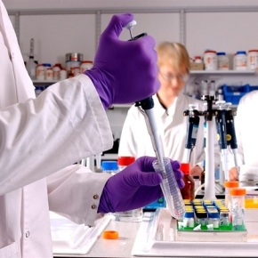 Buscan vacuna contra elzika