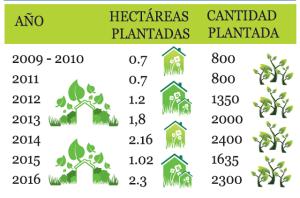 reforestacion walmart