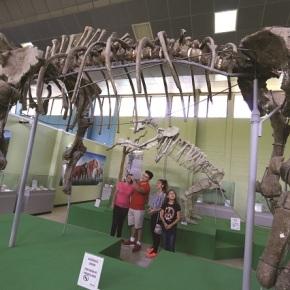 42 años del Museo de Paleontología  en Estanzuela,Zacapa