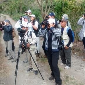 INGUAT dirige foro de aves deGuatemala