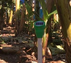 Desarrollan tecnología para el agro y elambiente