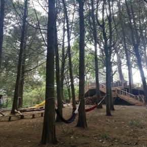 Este descanso disfrute de la naturaleza en San Agustín BikePark