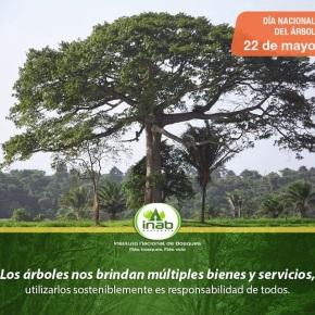 Día del árbol enGuatemala