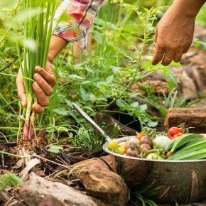 Día de la GastronomíaSostenible