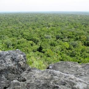 Guatemala comprometida con la protección de la Reserva de la BiósferaMaya