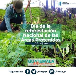 Día de la Reforestación Nacional de las ÁreasProtegidas