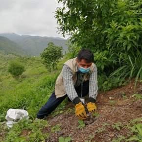 Rescatan mazacuata y es liberada en áreaprotegida
