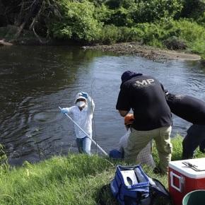 MARN denuncia ante el MP posible contaminación en el ManchónGuamuchal