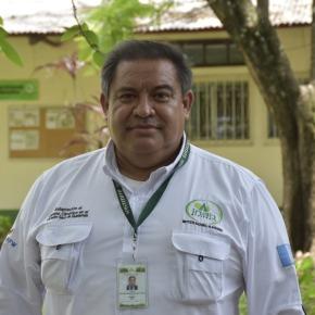 Bosques y sostenibilidad