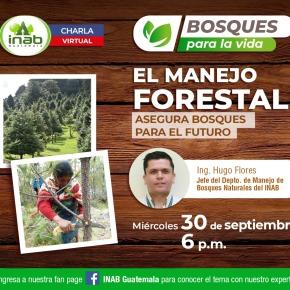 Charla el manejo forestal, asegura bosques para elfuturo