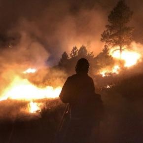 102 grandes incendios forestales en EstadosUnidos