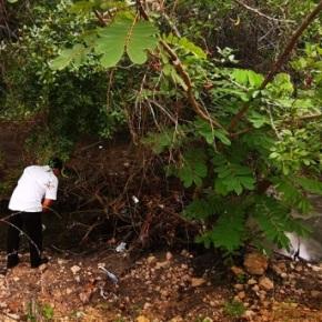 Denuncia por contaminación en el Lago de PeténItzá