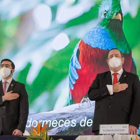 Guatemala lanza tres estrategias para proteger la faunasilvestre