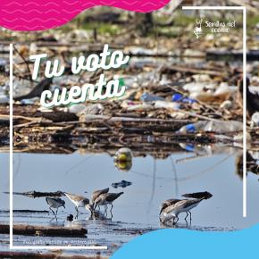 """Vota por el proyecto """"Limpiemos el desastre enGuatemala"""""""