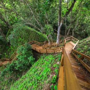 Yaxhá estrena escalinatas y plataformaspanorámicas