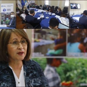 Aliados estratégicos a favor de la SAN deGuatemala