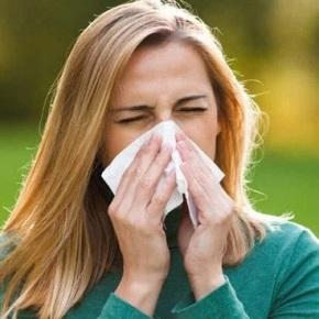 Contagios por coronavirus aumentan cuando hay más polen en elaire
