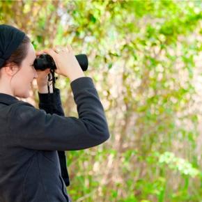 Aviturismo, el segmento que impulsa el turismosostenible