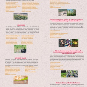 7 son los ganadores de Emprende Bosques Guatemala2021
