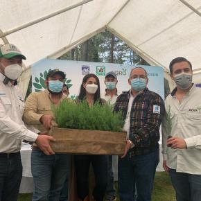 Reforestando Atitlán para un futuroverde