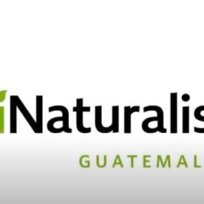 CONAP presenta iNaturalistGT
